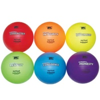 BUFFALO SPORTS SET 2 PREMIUM SOFT TOUCH VOLLEYBALL - 6 BALLS (CORVAL012)