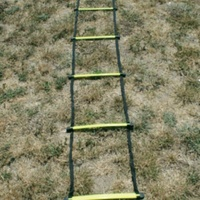 BUFFALO SPORTS FLAT HD PLASTIC SPEED LADDER - 4M OR 8M LENGTHS AVAILABLE