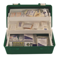 BUFFALO SPORTS FIRST AID CARRY CASE - INCLUDES THE ESSENTIALS (FIRST004)