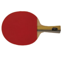DHS DOUBLE HAPPINESS INTERNATIONAL 2002 TABLE TENNIS BAT (TAB001)