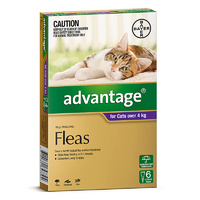 ADVANTAGE CAT OVER 4KG PURPLE 6'S (B9881)