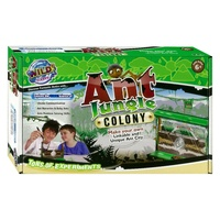 WILD SCIENCE ANT JUNGLE COLONY (UGTT034507)